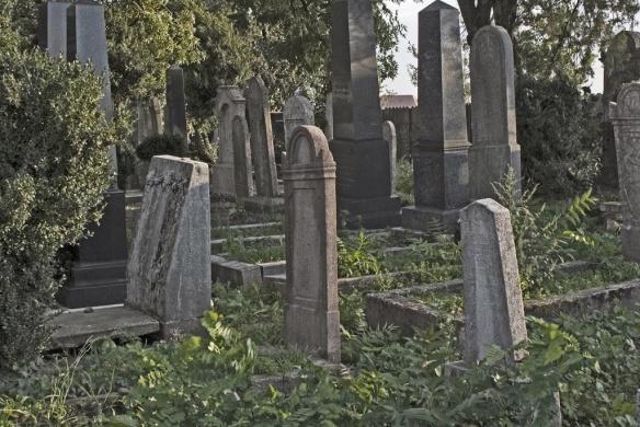 Helytörténeti séta az ercsi zsidó temetőben 2021