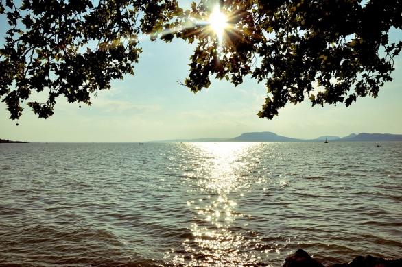 B my Lake Festival 2022